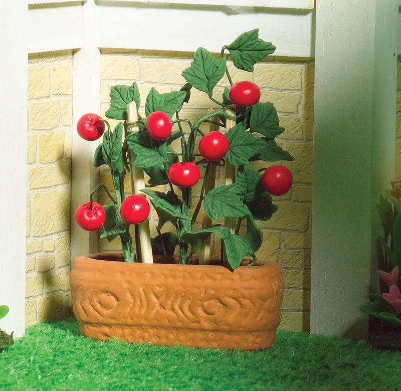 12th Scale Juicy Tomatoes Plants in a Pot Dolls House Emporium