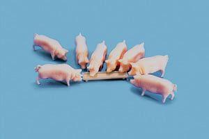 Peco Pigs & Trough