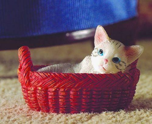 Miniature Kitten in Basket for 12th Scale
