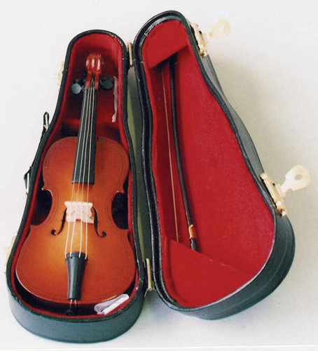 Double Bass in Black Case