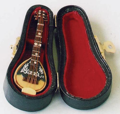 Mandolin with Luxury Black Case