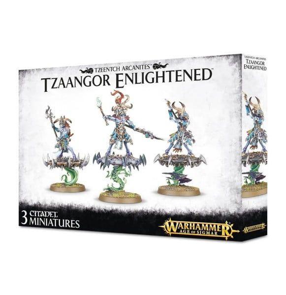 Warhammer Tzaangor Enlightened