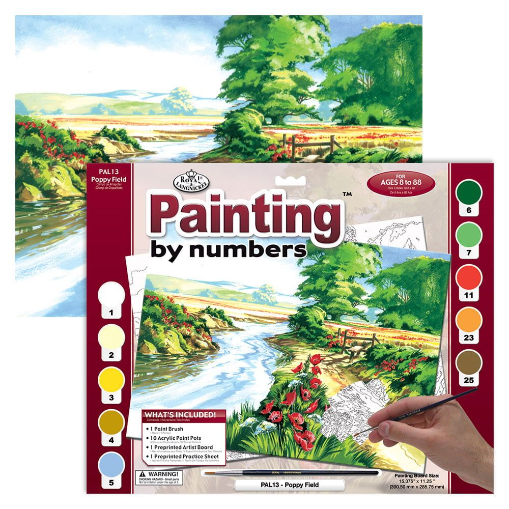 Painting By Numbers Poppy Field