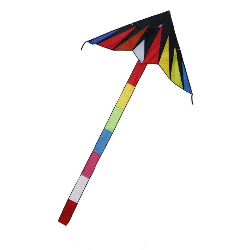 Rainbow Fan Tailed Delta D1255