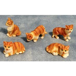 Miniature Ginger and White Cats 5 Assorted 12th Scale