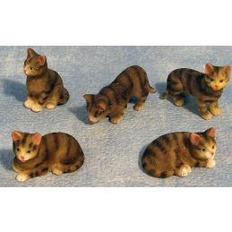 Miniature Tabby Cats 5 Assorted 12th Scale