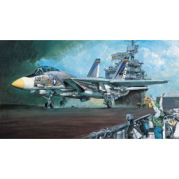 Academy 1/48 Scale US Navy F-14A Tomcat