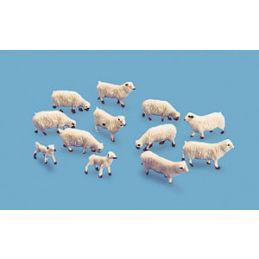 Peco Sheep & lambs