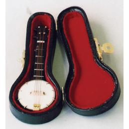 Banjo in Black Case