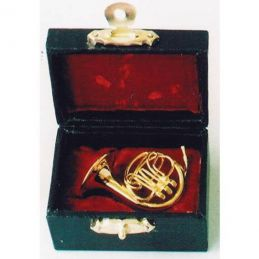 Brass French Horn with Black Case