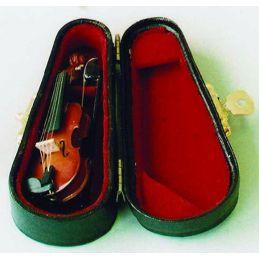 Violin in Black case