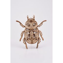 Wood Trick Beetle