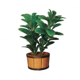 Rubber Plant 1 12 Scale for Dolls House