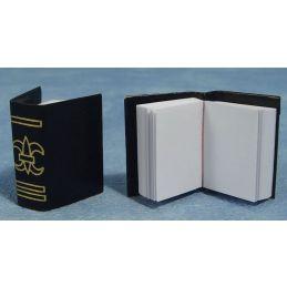 Large Books x 2