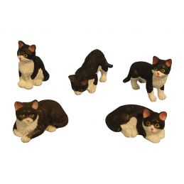 Miniature Black and White Cats 5 Assorted 12th Scale