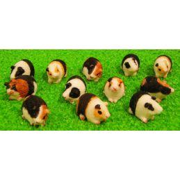 Miniature 12 Assorted Guinea Pigs 12th Scale