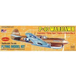 1:30 Scale P-40 Warhawk