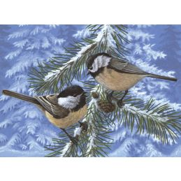 Painting By Numbers Pine Birds