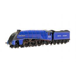 BR, A4 Class, 4-6-2, 60028 Walter K Whigham - Era 4